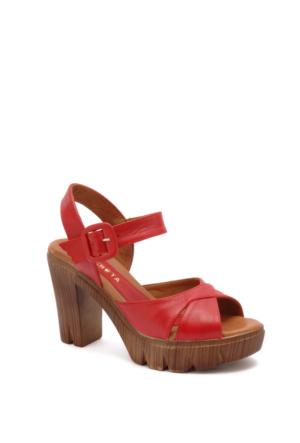 Beta Kadın Sandalet 305469