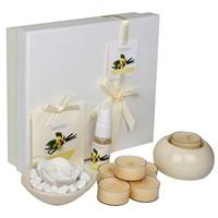 Hepsi Dahice Aroma Diffuser Set 6'Lı Tealight Vanilla