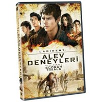 Maze Runner: The Scorch Trials (Labirent: Alev Deneyleri) (DVD)