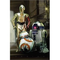 Pyramid International Maxi Poster - Star Wars Episode Vıı Droids