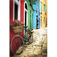 Bike Flowers Maxi Poster