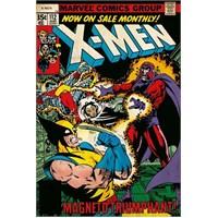 Maxi Poster X-men Magneto Triumphant