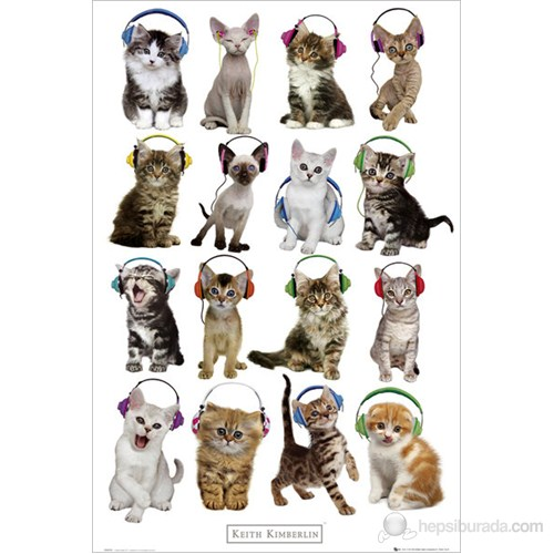 Keith Kimberlin Kittens Headphones Maxi Poster