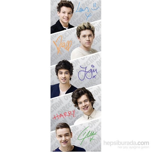 One Direction Door Poster