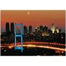 Educa 1000 Parça Puzzle Boğaziçi Köprüsü, Neon