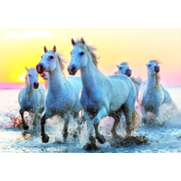 Educa Puzzle White Horses At Sunset 1000 Parça Puzzle