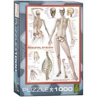 Eurographics İnsan Vücudu İskelet Sistemi Puzzle 1000 Parça