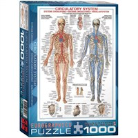 Eurographics 1000 Parça Kan Dolaşım Sistemi Puzzle