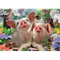 Piglet Pals (500 Parça Puzzle)
