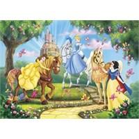 Princess And Horses (104 Parça)