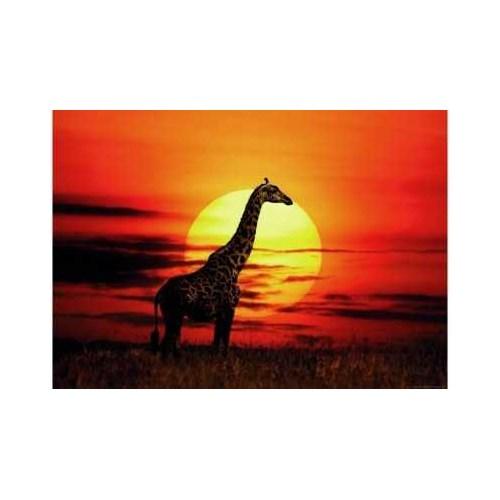 Heye Sunny Giraffe (1000 Parça)