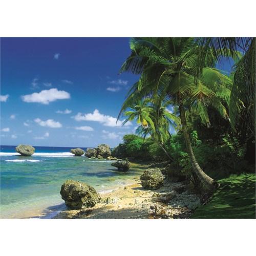 Palms On The Beach (1000 parça)