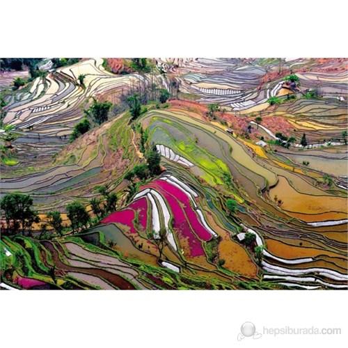 Educa 1000 Parça Rice Paddies, China