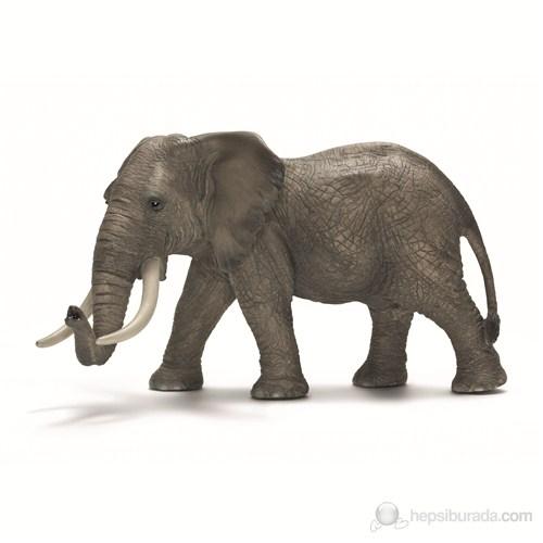 Schleich Afrika Fili Erkek 14656