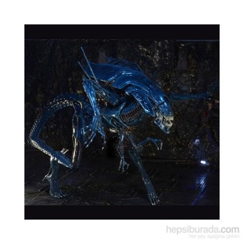 Aliens Xenomorph Queen Ultra Deluxe 15 İnch Action Figure