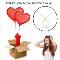 Ejoya Sürpriz Uçan Kalp Balonlu Altın Kolye Hediye Paketi