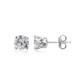 Carat Laboratories 0,5 Carat Tektaş Küpe Ce20618