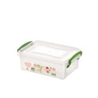 Dünya Niche Clear Box 2 Lt 30252