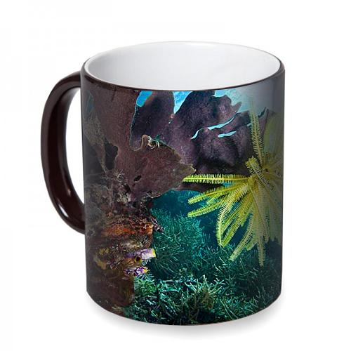 Fotografyabaskı Mercan Resifleri Arasında Deniz Lalesi Sihirli Siyah Kupa Bardak