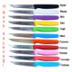 Sürmene Sürbısa 061004 Sebze Bıçağı 9.5 Cm 11 Renk Seçenekli