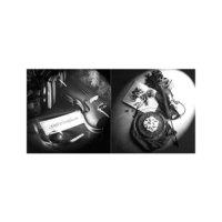 ARTİKEL Violin 2 Parça Kanvas Tablo 80x40 cm KS-533