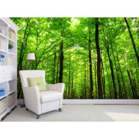 Artmodel Yeşilin Güzelliği Poster Duvar Kağıdı PDM-94