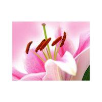 ARTİKEL Wonderful 3 Parça Kanvas Tablo 70X90 Cm KS-609