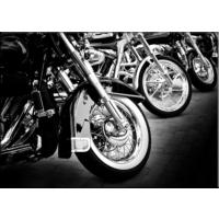 Pırıltı Vizyon Motosiklet Tablo