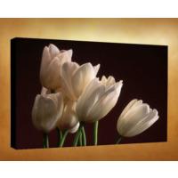 Kanvas Tablo - Çiçek Resimleri - C193