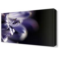 Dekor Sevgisi Mor Çiçek2 Tablosu 45x30 cm
