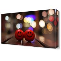 Dekor Sevgisi Gülen Toplar Canvas Tablo 45x30 cm