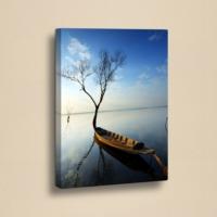 Decor Desing 50 X 70 Cm Kanvas Tablo Zey064