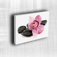Doku Canvas Baskı Çiçek- CIGE579