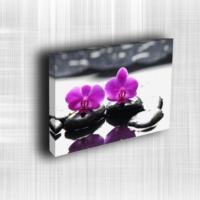 Doku Canvas Baskı Çiçek- CIGE583