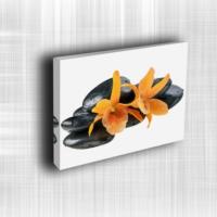 Doku Canvas Baskı Çiçek- CIGE639