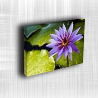 Doku Canvas Baskı Çiçek- CIGE563