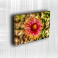 Doku Canvas Baskı Çiçek- CIGE560