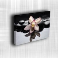 Doku Canvas Baskı Çiçek- CIGE599