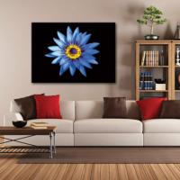 Tablom Mavi Lotus Çiçekleri Kanvas Tablo