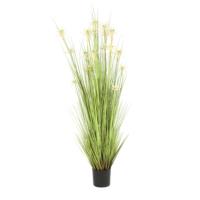 Yargıcı Yapay Bitki (183 cm)
