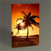 Tablo 360 Palm Trees And Sunset Tablo 45X30
