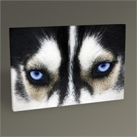 Tablo 360 Dog Tablo 45X30