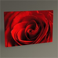 Tablo 360 Red Rose Tablo 45X30
