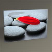 Tablo 360 Siyah Taş Ve Kırmızı Yaprak 45X30
