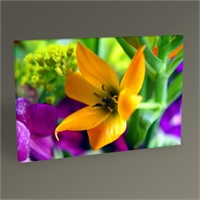 Tablo 360 Flower I Tablo 45X30