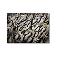Tictac Maymunlar Kanvas Tablo - 50X75 Cm