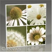 Pluscanvas - Quattro Flowers Iıı Tablo