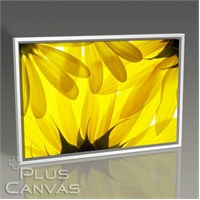 Pluscanvas - Yellow Daisy Tablo
