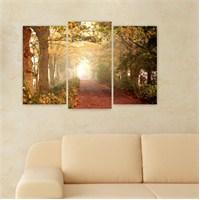 Dekoriza Ormanda Ağaçlı Yol 3 Parçalı Kanvas Tablo 80X50cm