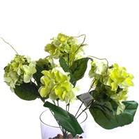 Yedifil Dahlia Dekoratif Çiçek Yeşil 1 Alana 1 Bedava